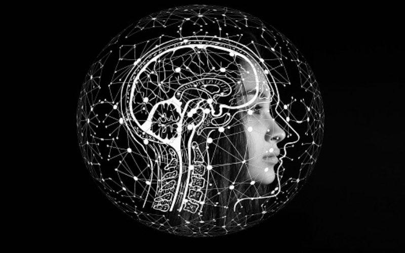 Un nuovo modello matematico aiuta a capire come funziona il nostro cervello