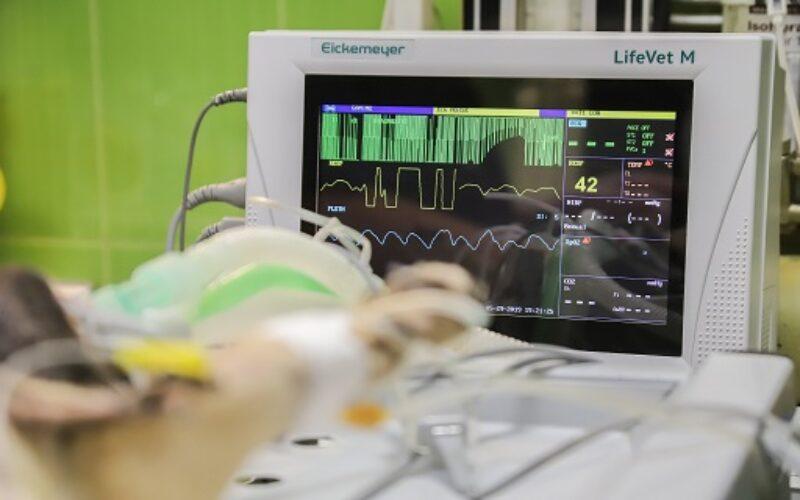 Tecnologia sanitaria, dalla Regione Sicilia 2,9 milioni per l'Asp di Caltanissetta